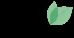 Buchwald-Stiftung